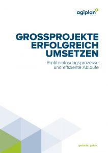 thumbnail of Großprojekte erfolgreich umsetzen_web